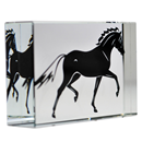 "Glass Cube ""Stallion"""