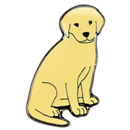 "Pin ""Golden Retriever"""